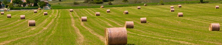 "Appellate Court rejects conclusion that appraising farmland is ""merely a speculative endeavor"""