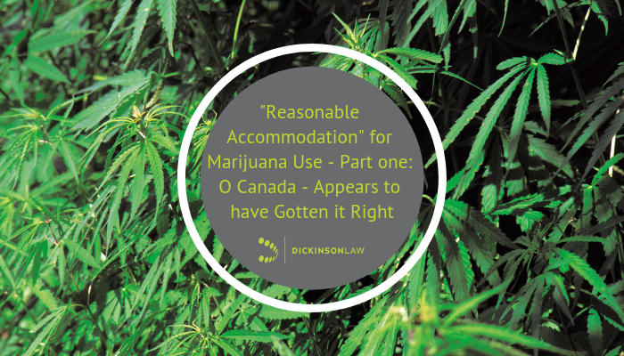 """Reasonable Accommodation"" for Marijuana Use - Part one: O Canada - Appears to have Gotten it Right"